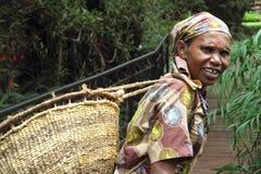old Tanzanian Woman works in coffee farm royalty free stock photo