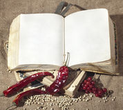 Old tattered book Stock Photo
