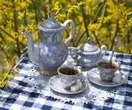Old tea set on checked tablecloth Royalty Free Stock Photo