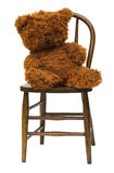 Old teddy bear on antique child's bentwood chair. Royalty Free Stock Photography