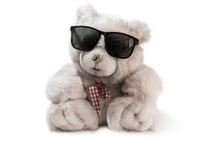 Old teddy bear sitting. Put on sun glasses, Teddy bear isolated on white background Stock Image