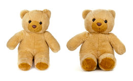 Old teddy bear on white Stock Image