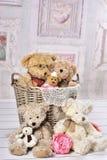 Old teddy bears still life Royalty Free Stock Photography