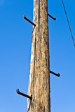 Old telephone pole with rungs for climbing Royalty Free Stock Photos