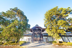 Old temple and big tree and blue sky Royalty Free Stock Photography