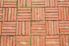 Old temple brick floor Royalty Free Stock Images