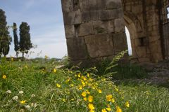Old temple in the midst of a green field. Historic centre, Kutaisi Royalty Free Stock Images