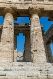 The old temple of Paestum. Paestum, Italy, was a major ansient Greek city on the coast of the Tyrrhenian sea in Great Graecia. The Temples of Paestum was built stock image