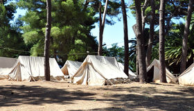 Old tent camp in the woods Stock Image
