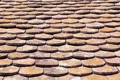 Old terracotta roof tiles Stock Images