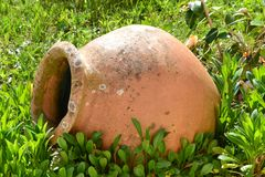 Terracotta vase on the lawn Stock Images