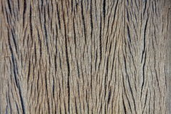 Old  texture and pattern of wood Stock Photography