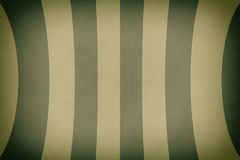 Old texture of vertical curved lines. Green color. Ten color lines Stock Photography