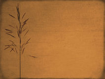 Old-textured  background Royalty Free Stock Images