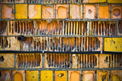 Old textured brick wall of yellow and orange Royalty Free Stock Image
