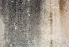 Old textured concrete wall. Shot of a old textured concrete wall Stock Image