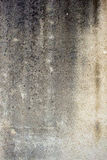 Old textured concrete wall Stock Image