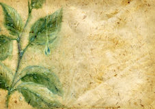 Old textured paper with watercolor leaves stock illustration