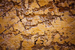 Old textured stone wall background Royalty Free Stock Images