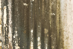 Old textured wall with mold. Background royalty free stock images