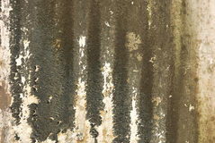 Old textured wall with mold. Background stock images