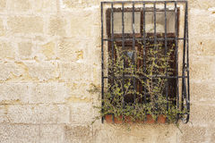 Old textured wall with window Royalty Free Stock Images