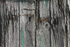 Old textured wood and bolt on an old shed Royalty Free Stock Images