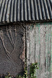 Old textured wood on an old shed Royalty Free Stock Photography