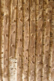 Old textured wooden background Stock Photos