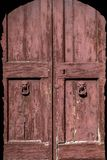 Old textured wooden doors. With lion shape handle Royalty Free Stock Photo