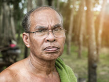 Old thai gardener man in rubber tree garden Royalty Free Stock Images