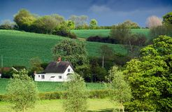 Old thatched cottage, rolling farmland, dappled sunlight. English thatched cottage.  Focus is on cottage Stock Images