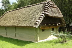Old thatched farm house Royalty Free Stock Photo