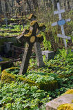 The old thrown grave. S under the spring sun Royalty Free Stock Image