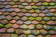 Old tile roof Royalty Free Stock Image