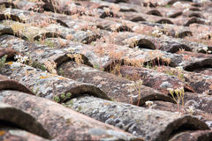 Old tile roof close up Royalty Free Stock Photos