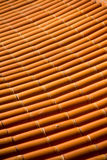 The old tile roof. Stock Image