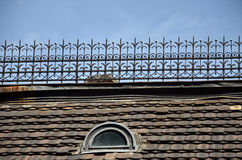 Old Tiled Roof Royalty Free Stock Image