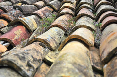 Old tiles in Osp Royalty Free Stock Photography