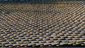 Old Tiles Roof Background Stock Image