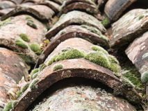Old tiles on a rooftop. The old tiles on a rooftop with moss growing royalty free stock photography