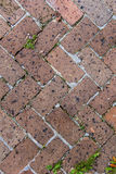 Old tiles at the sidewalk Royalty Free Stock Photo