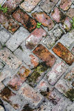 Old tiles at the sidewalk Stock Photo