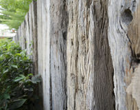 Old timber fence Royalty Free Stock Photography