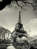 Old time eiffel tower view. Old time black and white view Royalty Free Stock Photos