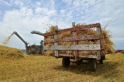 Old time threshing memories during harvest Royalty Free Stock Photography