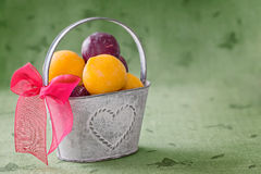 Old tin bucket with red ribbon filled  yellow and red plums on g Stock Image