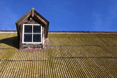Old Tin Roof. An old tin roof covered in moss royalty free stock images