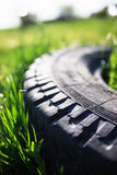 Old tire in grass Stock Images