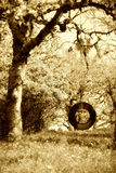 Old Tire Swing Sepia Royalty Free Stock Photo